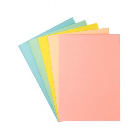 Sous-chemise Paquet de 250 Exacompta 22 x 31 cm couleur