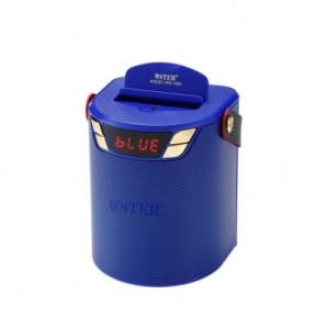 Enceinte Portable Bluetooth numérique Wster WS-1660